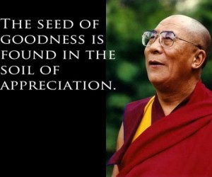 inspirerende quotes inspirational quotes citas de inspiración The seeds of goodness is foud in the soil of appreciation